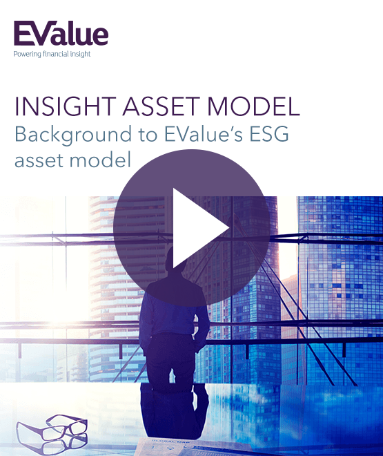 Insight Asset Model Video